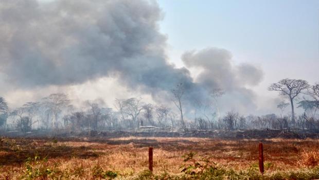 Goiás tem aumento de 99% em queimadas nos últimos dois meses
