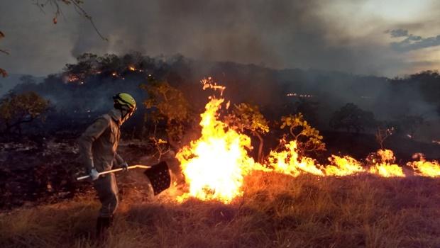 Aumenta risco de queimadas nas regiões Norte e Sudoeste do Estado