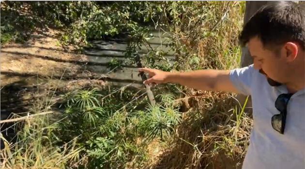 Deputado Paulo Trabalho denuncia lançamento de esgoto em córrego de Posse e Saneago diz que água não está contaminada