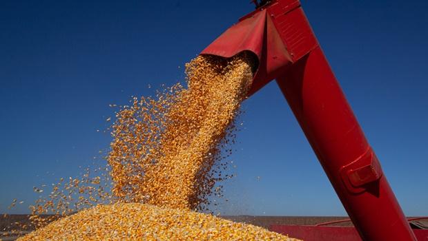 Goiás possui três municípios entre os 10 de maior valor de produção agrícola do País
