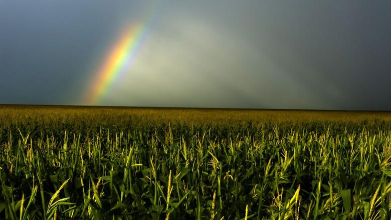 Chuvas são uma graça de Goiás