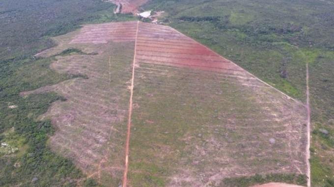 Fiscais apuram novo desmatamento na Chapada dos Veadeiros