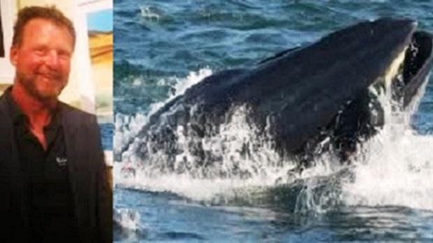 """Profeta Jonas da vida real: pescador é engolido e """"vomitado"""" por baleia"""