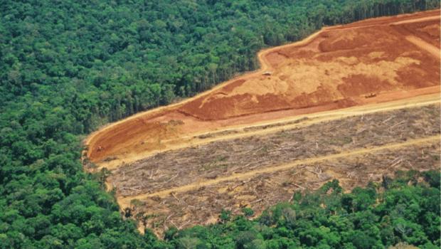 Em agosto, desmatamento na Amazônia bateu o recorde dos últimos 10 anos
