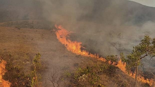 Chapada dos Veadeiros: combate a incêndio chega ao nono dia com mais de 18 mil hectares destruídos