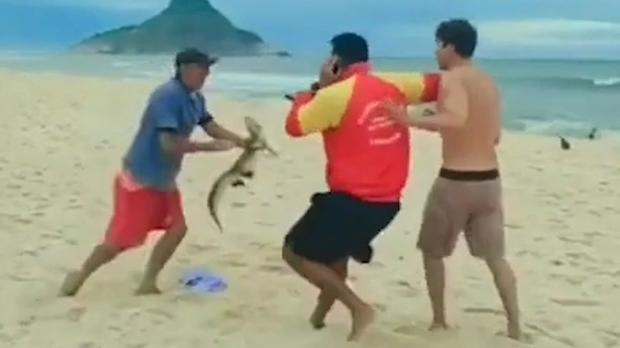 Jacaré é usado como arma durante briga em praia do Rio de Janeiro; Veja vídeo