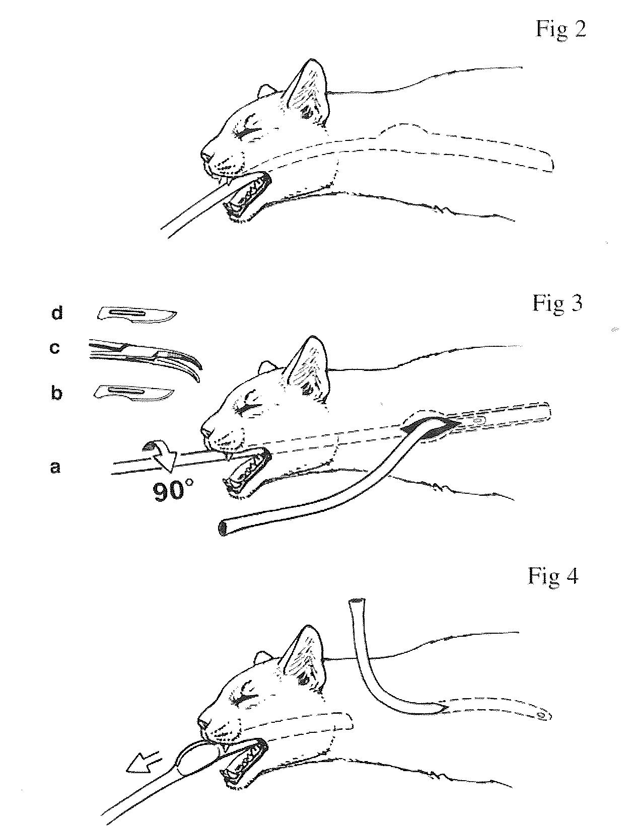Esophagostomy Tube Insertion Device