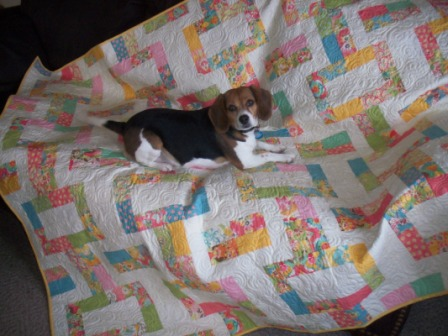 quilt-laying