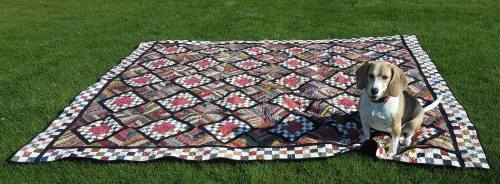Fair-and-square-quilt-4