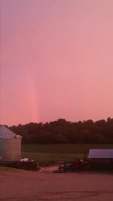 6-15 Rainbow 2 (225x400)