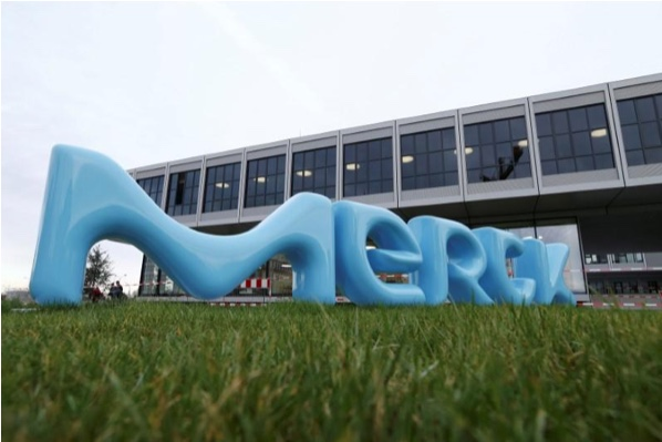 Germany's Merck seeks partners for cancer and immune system drugs