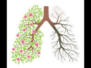Incidencia del tabaco en el cáncer de pulmón