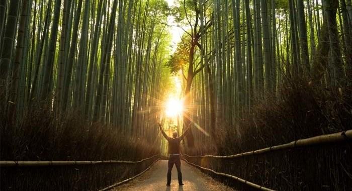 Con la psicoterapia online, el tratamiento online de ansiedad, estrés, adicciones, dejar de fumar, trastornos alimentación etc...