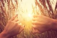 Cultivar la presencia. Terapia Gestalt y auto conciencia