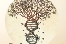 El árbol, una metáfora de los niveles neurológicos. Conexión entre ser y hacer.