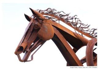 Chipeta-Horse-Joseph-Fichter