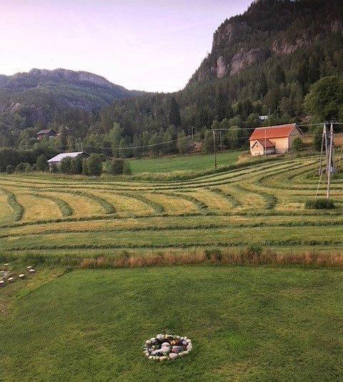 Tross tørken var det grønt gress. Nydelig med slåtten!