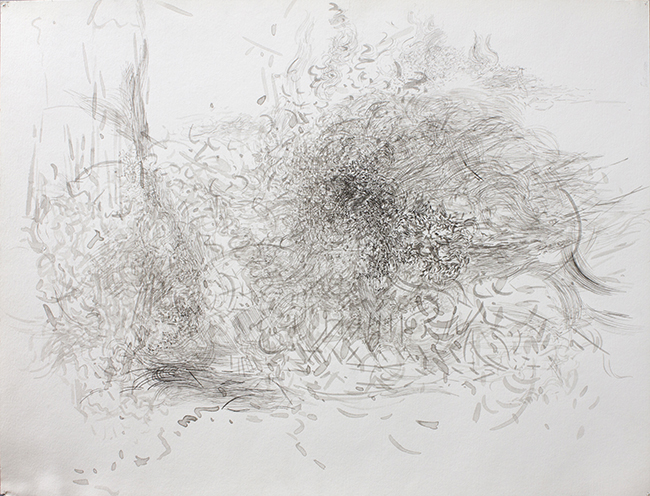 Arrested, ink on paper, 20 x 26.125 inches, 1980.
