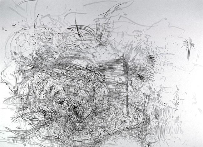 Palm, ink on paper, 26 x 32 inches, 1981.
