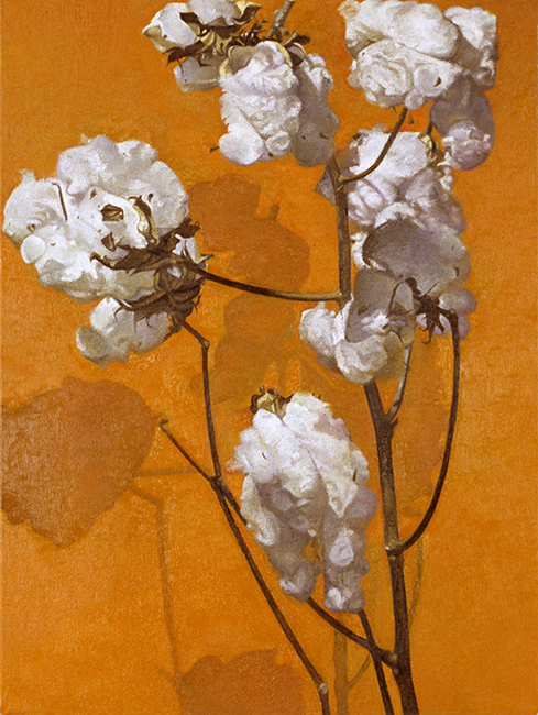 Cotton II, oil on canvas, 16 x 12 inches, 1998. Private collection.