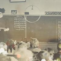 Teaching: five things I wish I'd known fifteen years ago