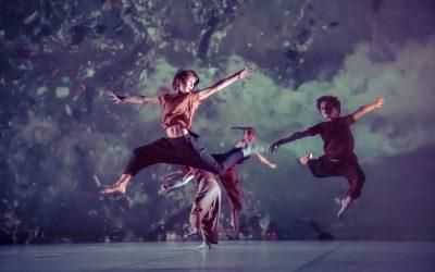 Baobabs au Grand Théâtre de Provence :: Interview Josette Baïz