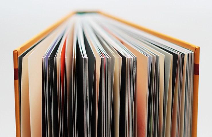Fake News de Manu Larcenet, éditions les Rêveurs, un beau livre.