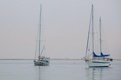Morning mist in Walvis Bay.