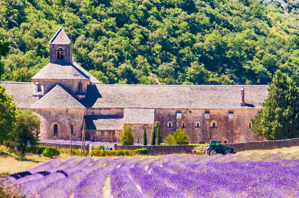 In the Land of Lavender – The Best of the Luberon