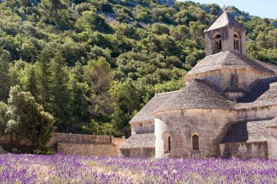 The aspe of Our Lady of Sénanque extends into a lavender field.