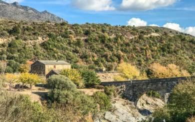 Corsica-Road to Corte.