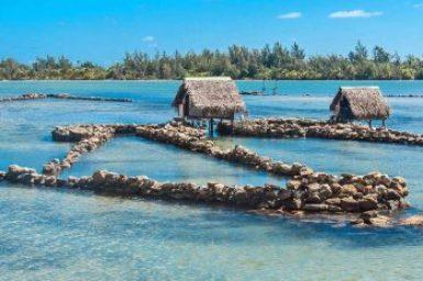 Society-Huahine fish traps.