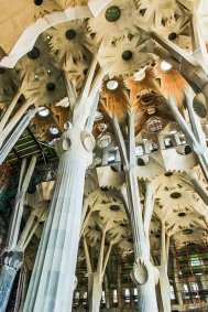 Gaudi-Sagrada flower vaults.