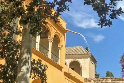 Fountains of the Alcázar (4).