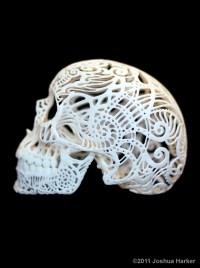 CraniaAnatomicaFiligre-side