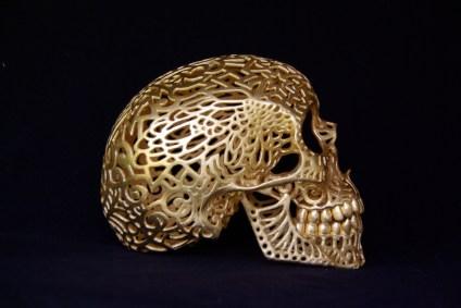 Joshua Harker, 3d printing, skull, Nike
