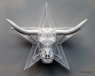 Lones Taurus