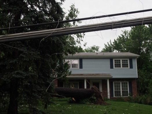 A fallen tree in front of a house on Darst Rd.