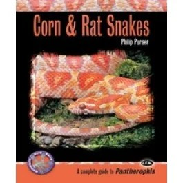 Caring for Corn Snakes - Josh's Frogs How-To Guides