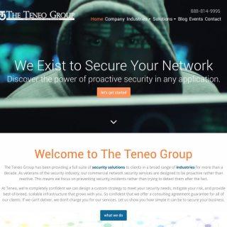 screenshot-www-theteneogroup-com-2016-12-05-11-29-41
