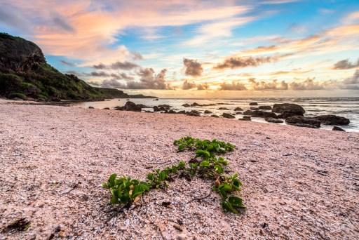 Taga'chang Beach Sunrise