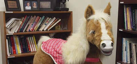 Save Butterscotch Pony