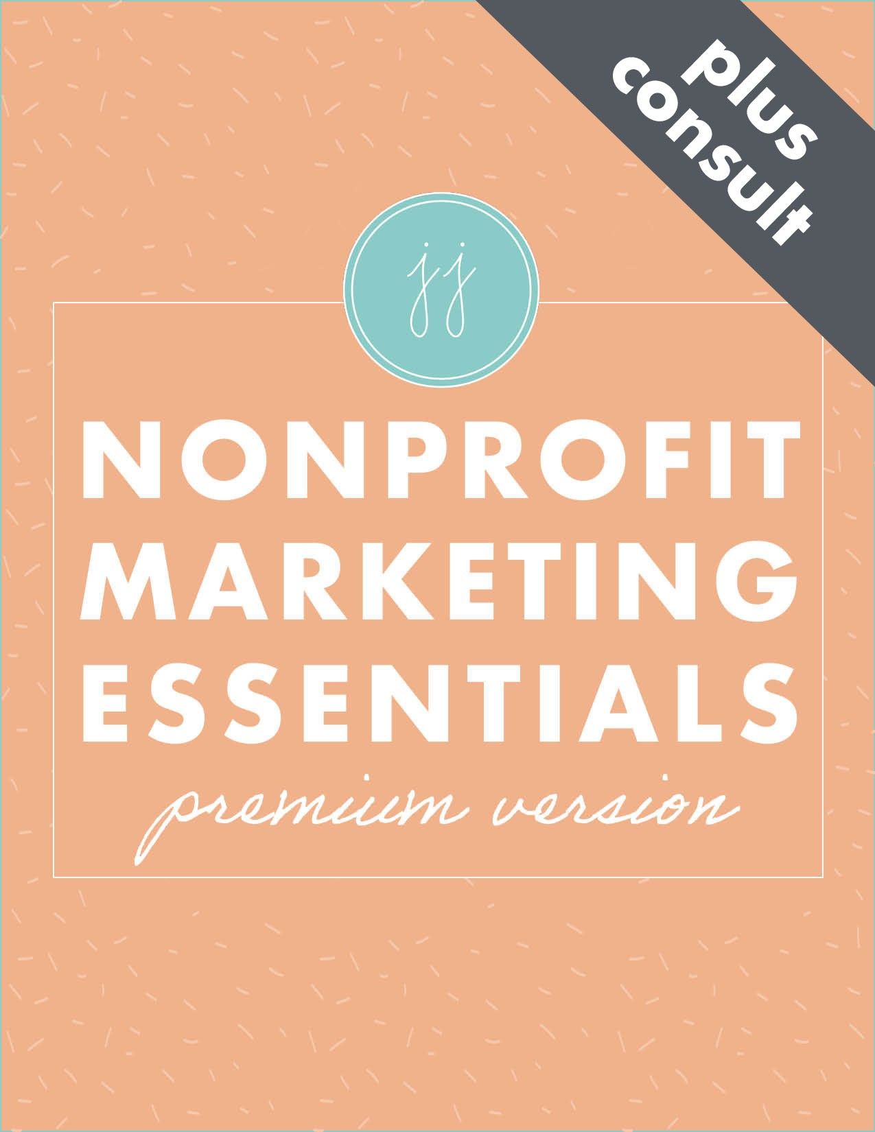 nonprofit marketing essentials plus consult