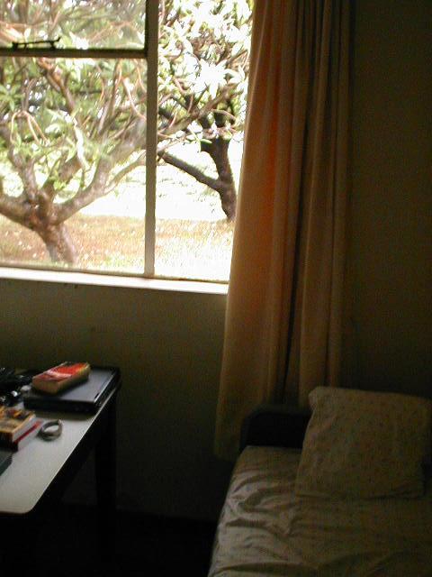 Blick aus meinem Zimmer