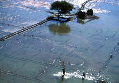 El río Nilo se desbordaba todos los años, haciendo imposible erigir ciudades permanentes en sus orillas.
