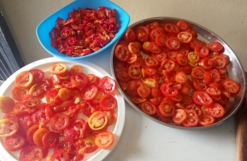 Place the sliced tomatoes and peppers on the hottest spot outside your house for these to dry properly