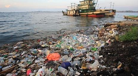 Photo of Pollution: Definition, Types of Pollution, Causes, Effects and Solutions