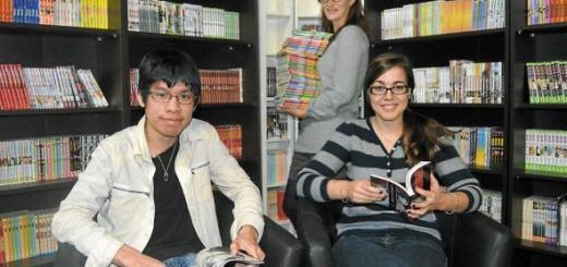Bilan Manga Libraire
