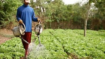 Émigration en Europe/Centre d'excellence agricole