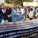 CNSE du Burkina Faso